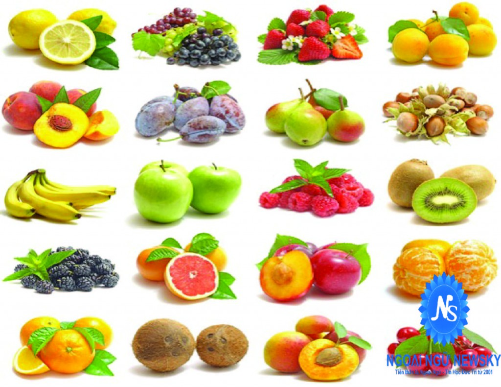 Tên tiếng Anh của các loại trái cây phổ biến nhất