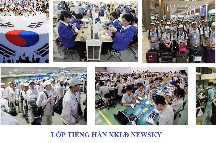 Lớp tiếng Hàn xuất khẩu lao động tại quận Thủ Đức
