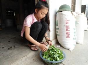 Sau những giờ đến trường, Thùy Linh lại phụ giúp công việc cho ông bà.