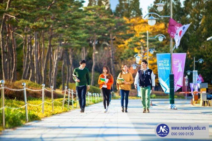 Trung tâm học tiếng Hàn uy tín Phú Nhuận