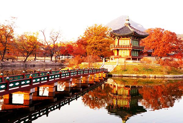 Trung Tâm Tiếng Hàn Uy Tín Quận Tân Bình